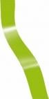 Geschenkband hellgrün 10mm250m