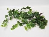 Efeuhänger / Efeubusch  grün/weiß 53cm 1Stk