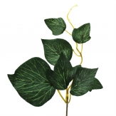 Efeupick grün 20cm 6Stk