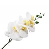 Orchideenzweig weiß 83cm 1Stk