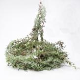 Tannengirlande grün geweißt mit Zapfen 180cm 1Stk