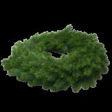 Tannenkranz grün 60cm auf Styropor