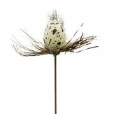 Blumenstecker Eier creme 3x2,5cm 24Stk
